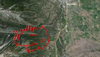 The spread of the Roaring Lion Fire slows  Wildfire Today