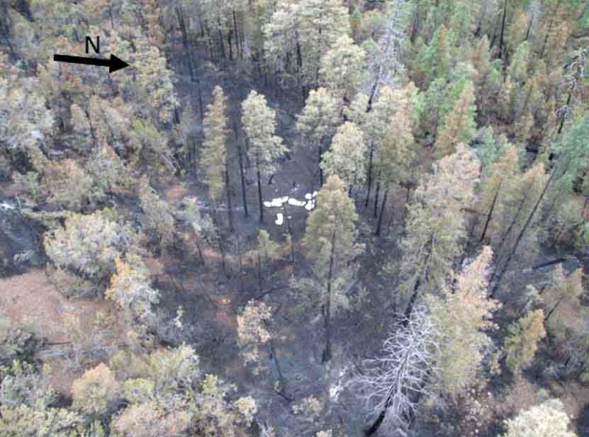 cedar fire entrapment site