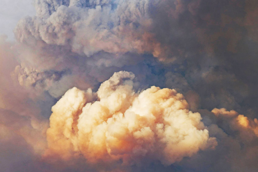 Looking into the forces that drive wildfires