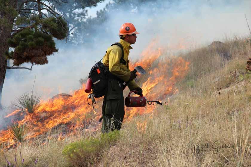 Shep Canyon wildfire