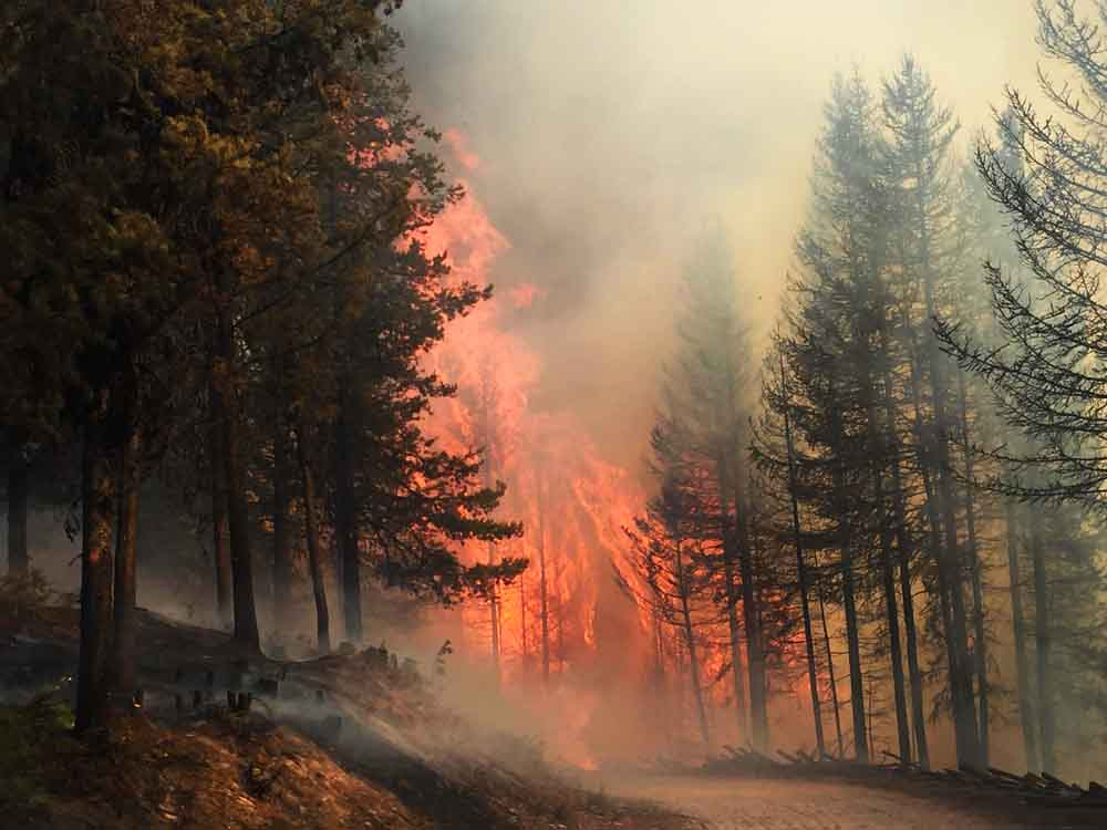 Rice Ridge Fire almost doubles in size to over 100,000 acres