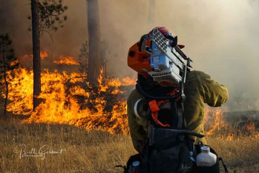 Legion Lake Fire
