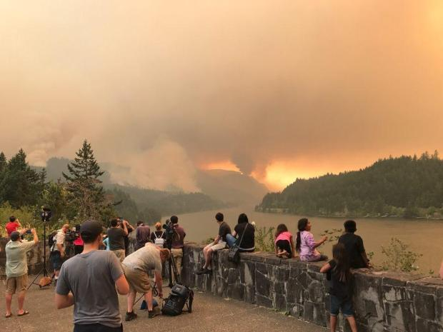 Teenager accused of starting Eagle Creek Fire likely to get probation