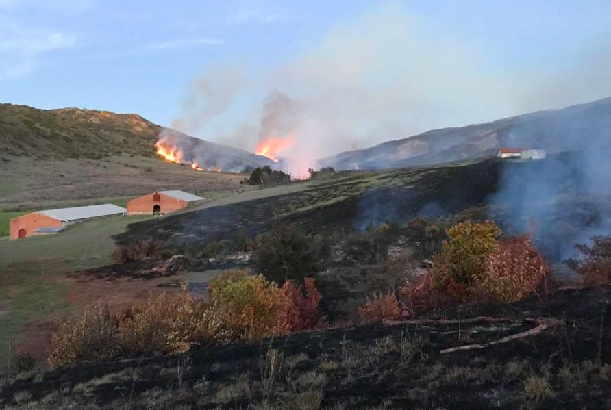 Wildfire burns about 250 acres on Santa Cruz Island