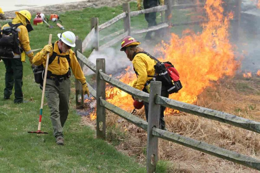 Wolf Trap National prescribed fire