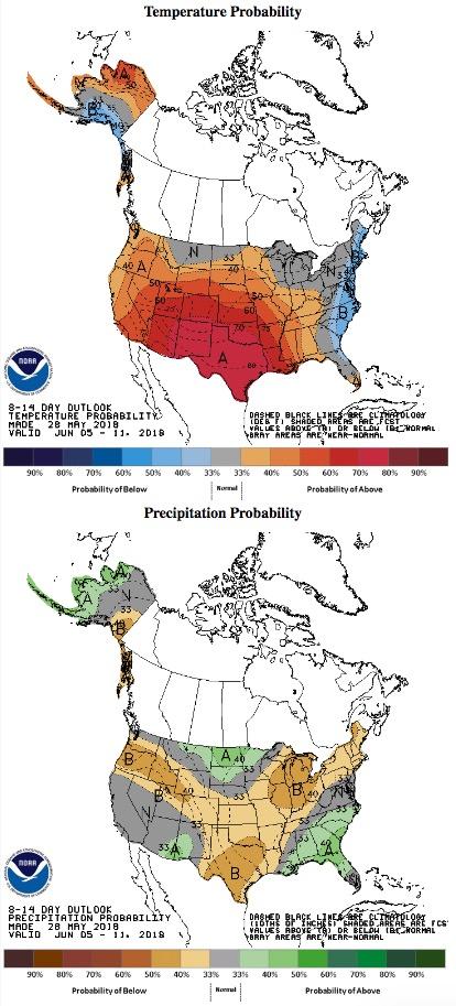 temperature precipitation outlook