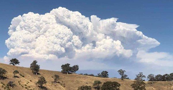 Timbarra bushfire