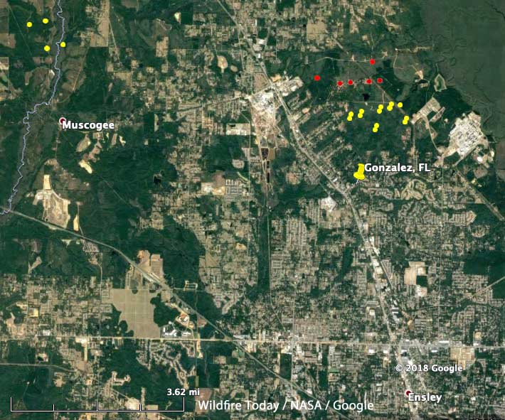 Northwest Florida Map.Dozer Operator Killed On Prescribed Fire In Northwest Florida