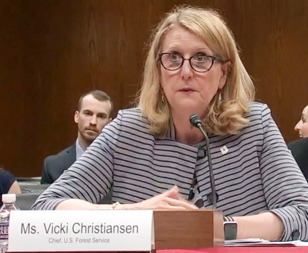 Forest Service Chief Vicki Christiansen budget FY2020
