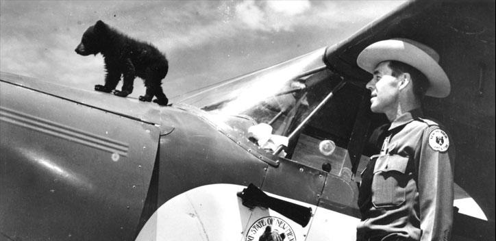 Smokey Bear On Plane