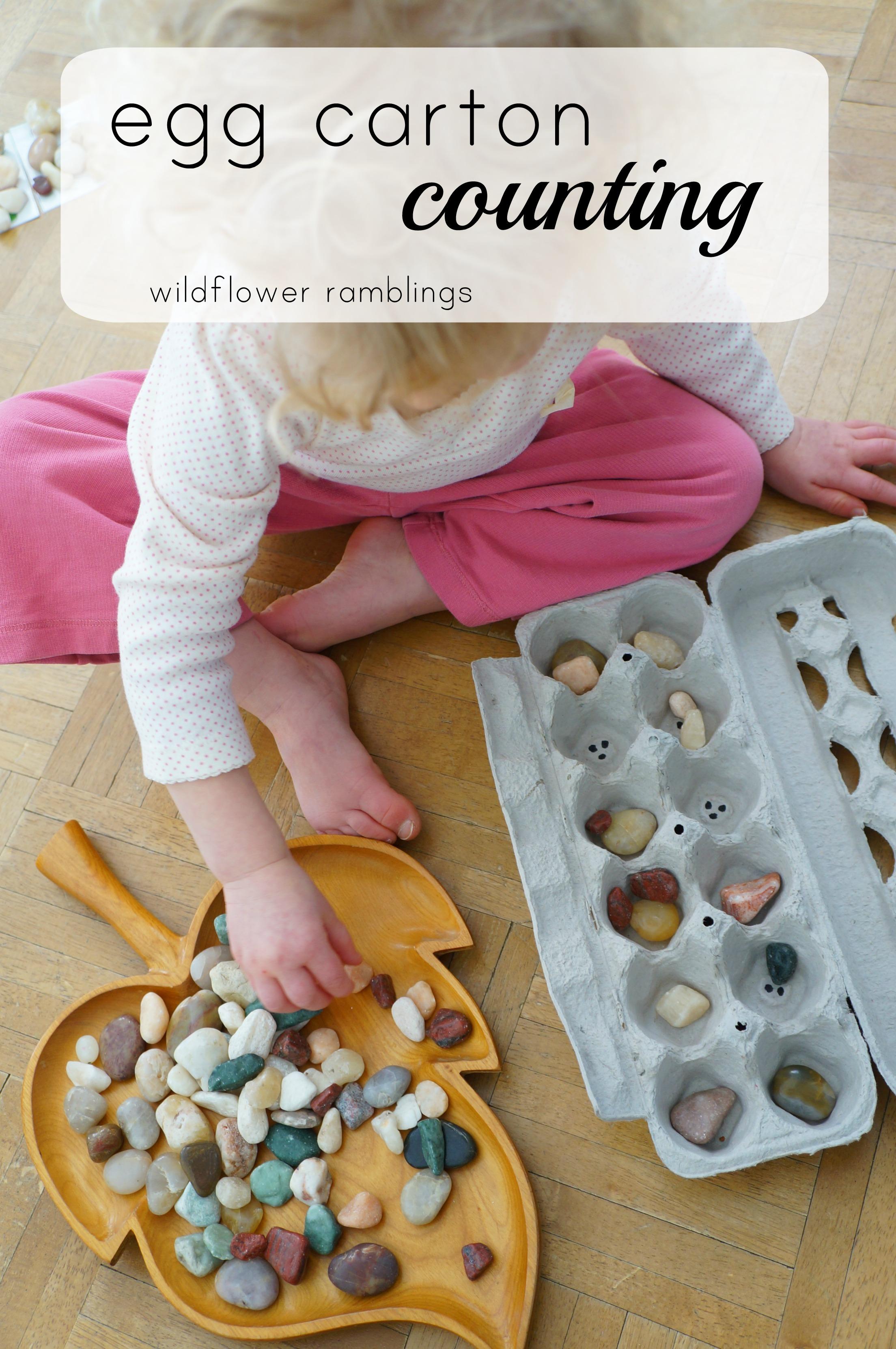 Egg Carton Counting