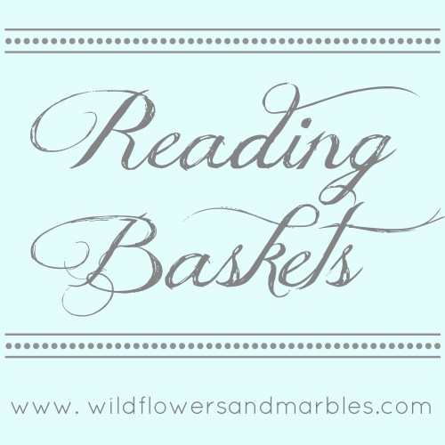 Reading Baskets