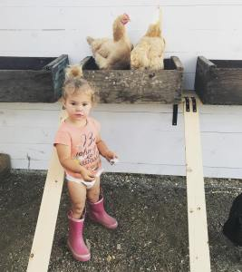Daughter with chickens and boots gathering eggs
