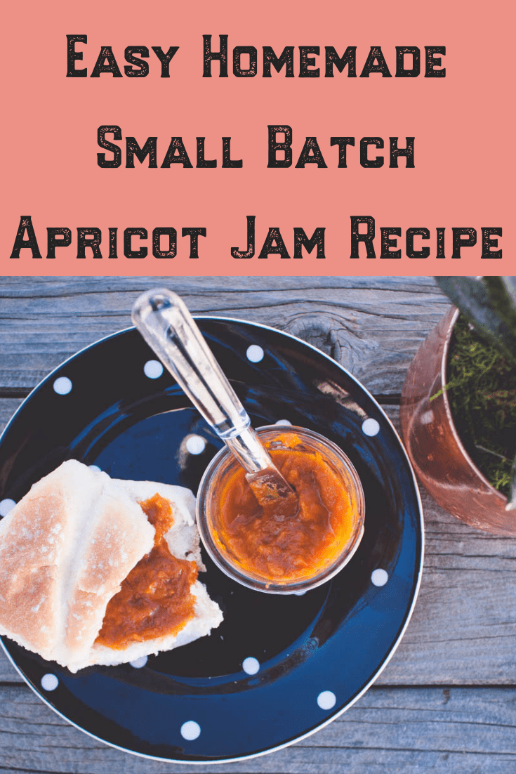 During apricot season, I can't seem to make homemade jam fast enough! This easy recipe, sweetened with honey recipe has become a favorite among family and friends, especially for Christmas and wedding favors! I use the water bath canning method with pectin in making this small batch treat! Check it out to learn how to make it yourself! #easy #apricot #recipe #withpectin #canning #smallbatch #homemade #howtomake #honey