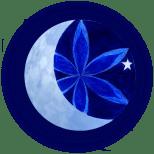 Astara & the Flower of Life