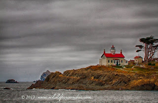 Battery point lighthouse in Crescent City - Northern California