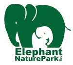 Elephant Nature Park in Cambodia