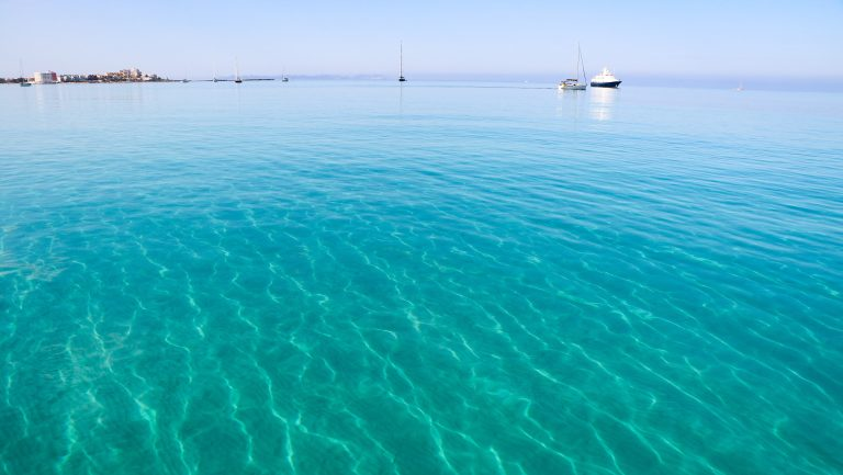 Beware of Posidonia in Formentera