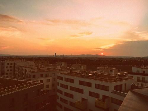 Sunset Yoga am Dach - Seestadt Aspern