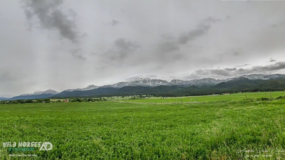 New Snow in the Wallowa Mountains, June 10, 2021