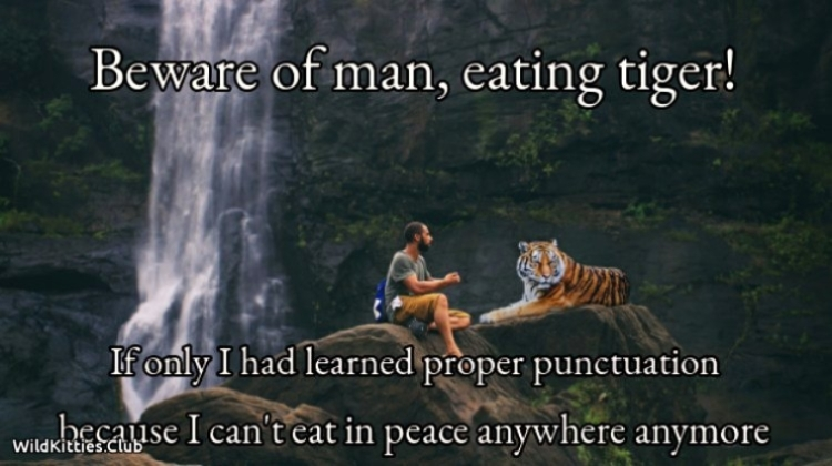 Beware of man, eating tiger!