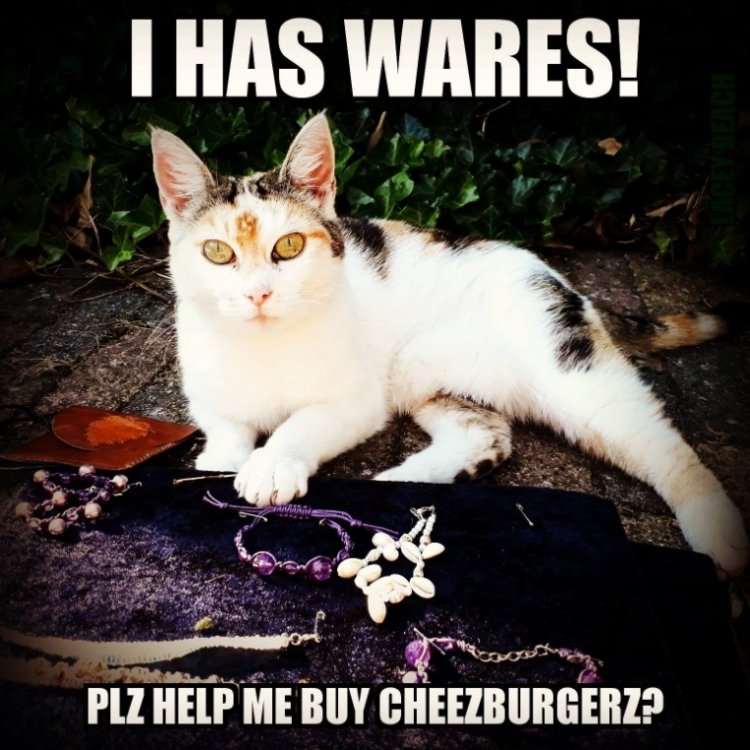 Plz help me buy cheezburger?