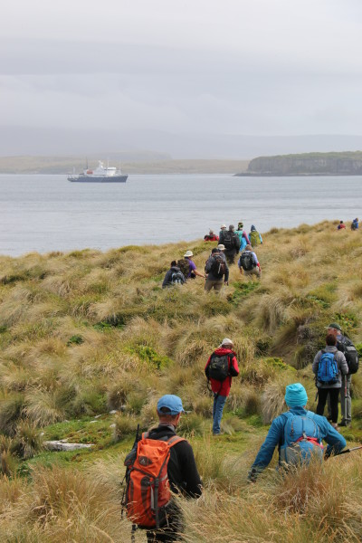 The end of the long walk around Enderby Island