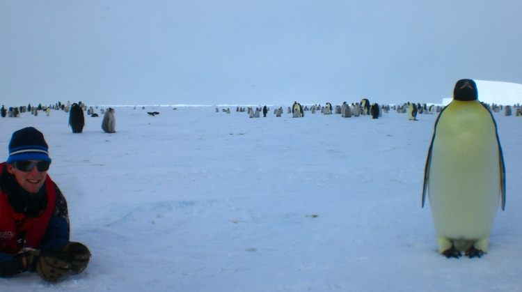 Antarctica with emperor penguins