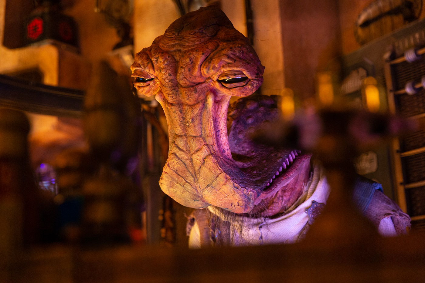 The Den of Antiquities at Galaxy's Edge in Disneyland