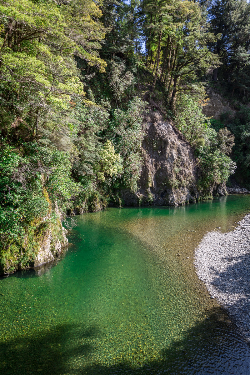Kaitoke Regional Park. One of the Lord of the Rings Filming Locations. North Island, New Zealand. Rivendell