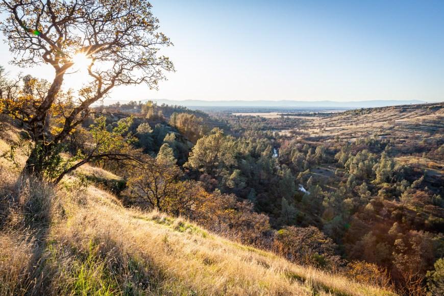 Upper Bidwell in Chico, CA