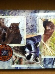 Successful Trapping: Tips and Techniques by Pennsylvania Trappers