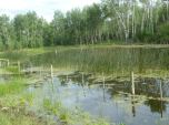 Lost Lake Before (4) web