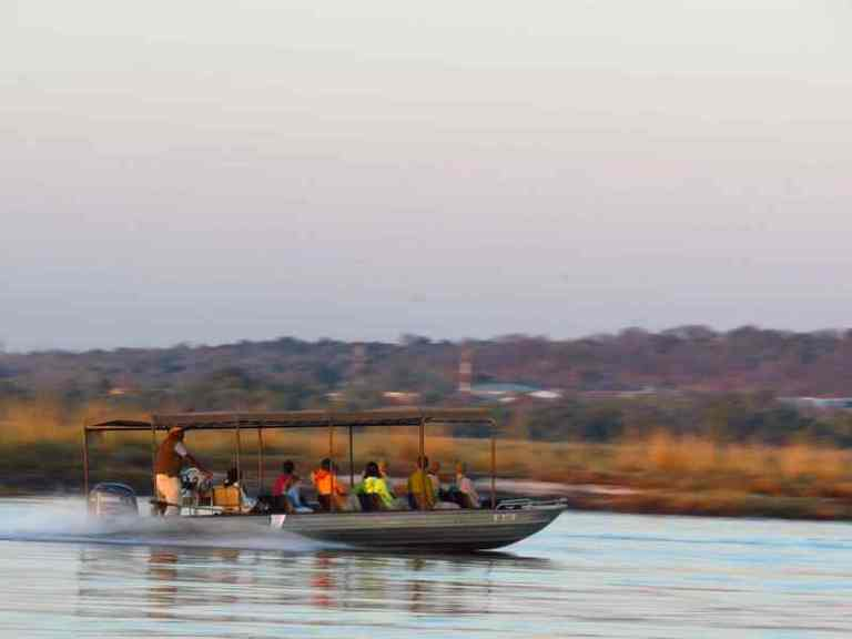 boat tour on chobe river front