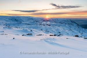 Sunset at Estrela Mountain