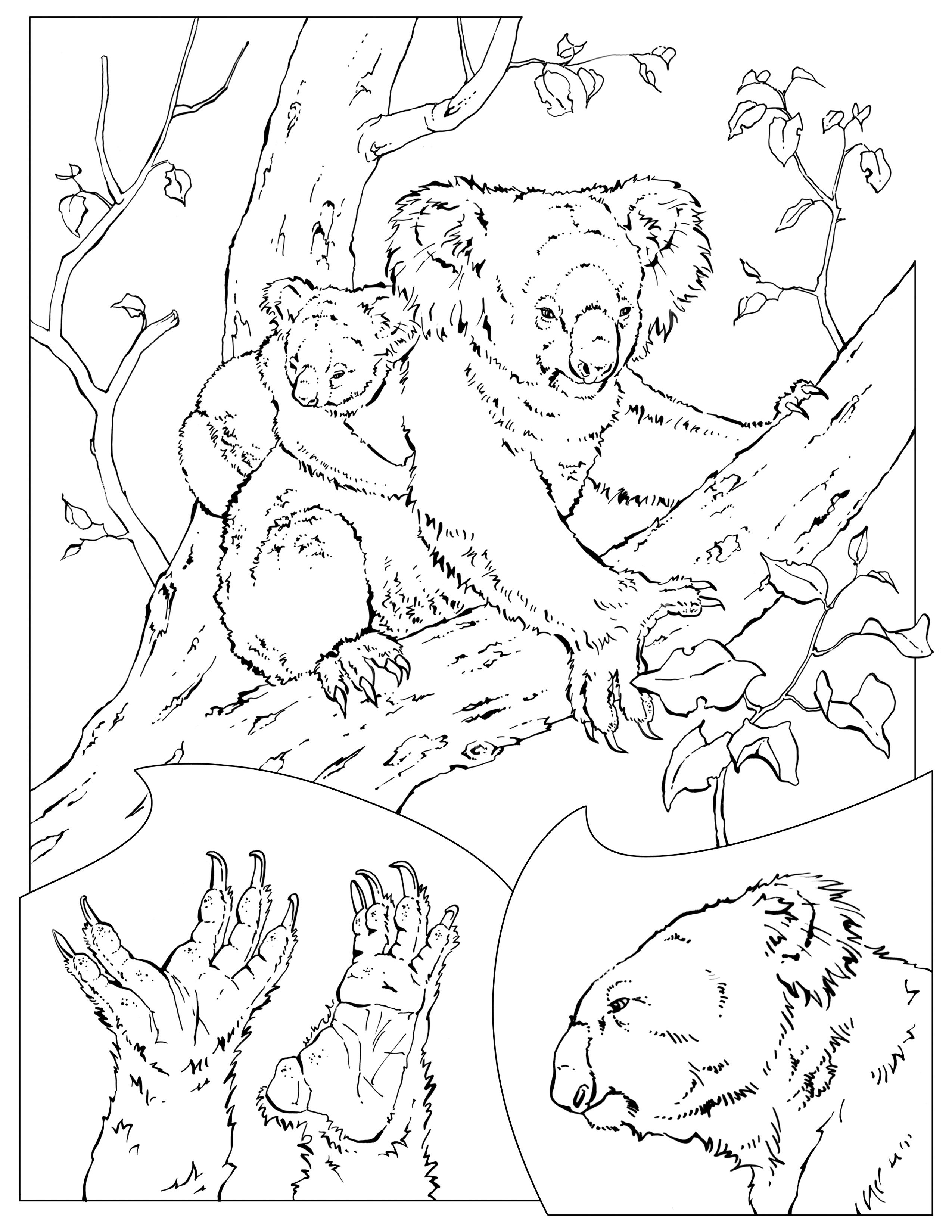Geo Me Coloring Pages