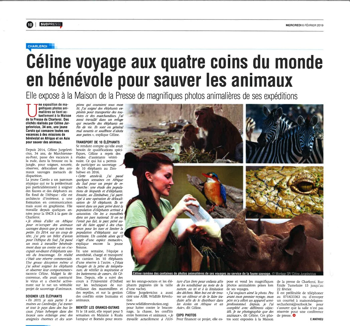 gazette06fevrier2019