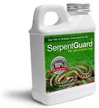 Serpent Guard