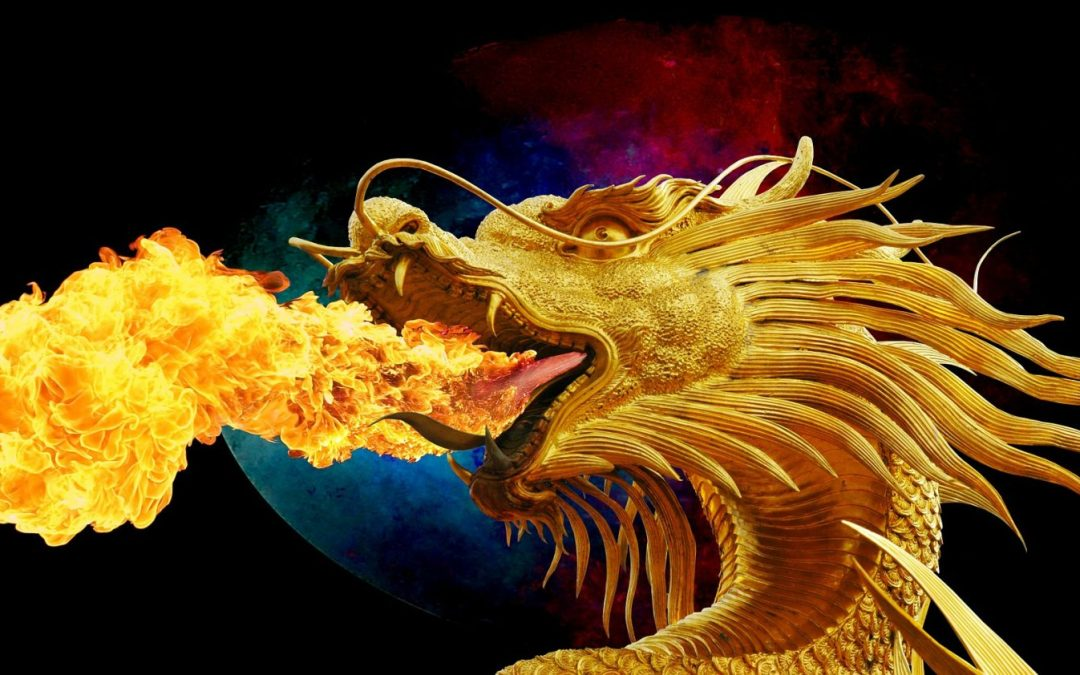 Firework dragon