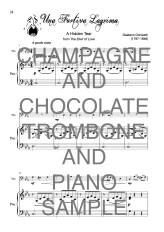 The Terrific Trombone book of Champagne and Chocolate Web Sample2