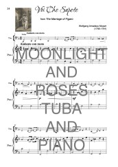 The Twinkling Tuba Book of Moonlight and Roses Web Sample2