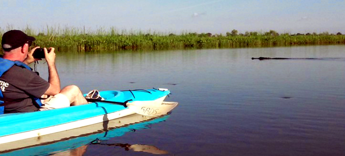 Delta at Sunset Kayak Tour