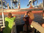 Viewing shipyards up close