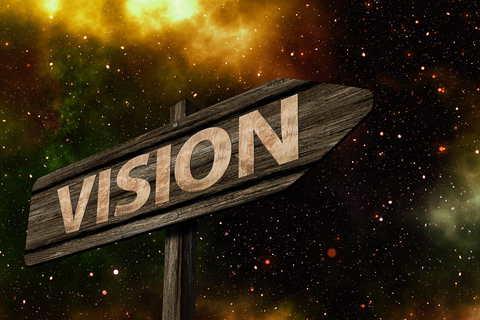 vision survival