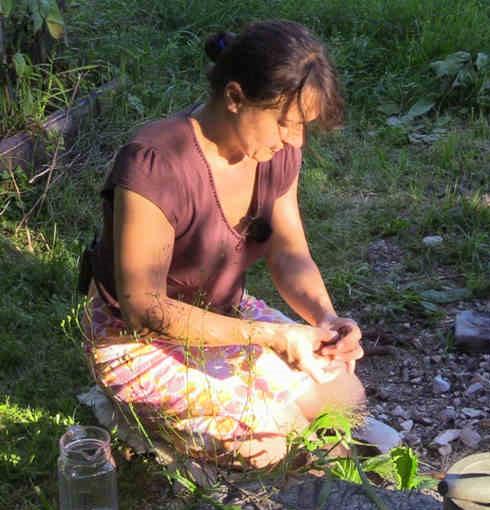 Sandra survivalpflanzen wildnis