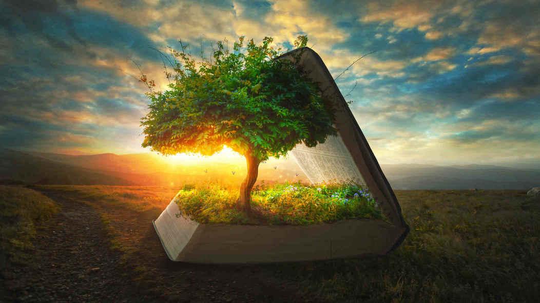 Baum im Buch pflanzenwissen