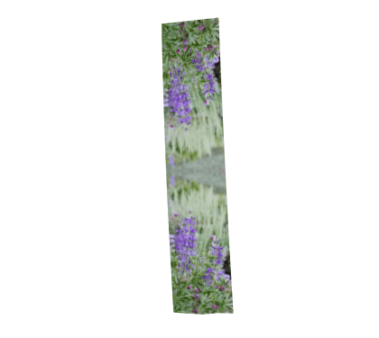 purple lupine wildflower rectangular long scarf handmade