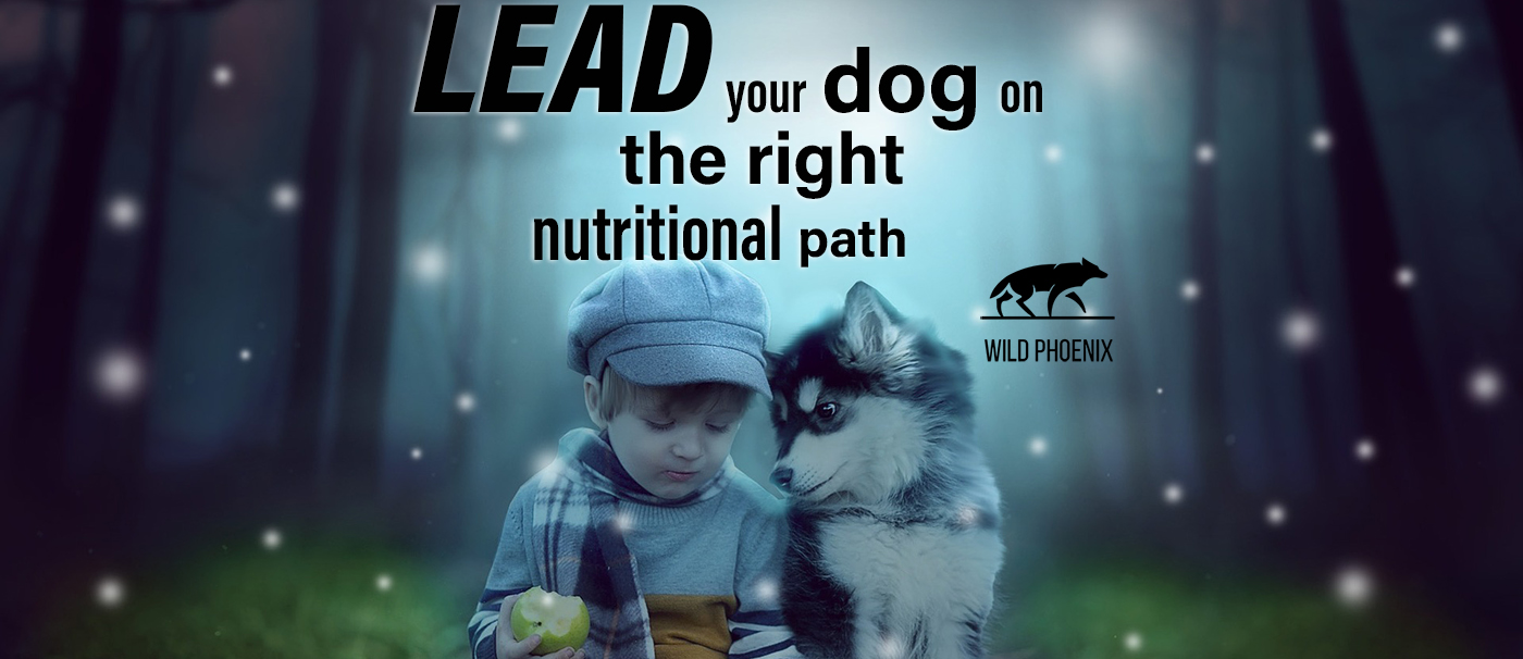 Lead your dog to the WILD!