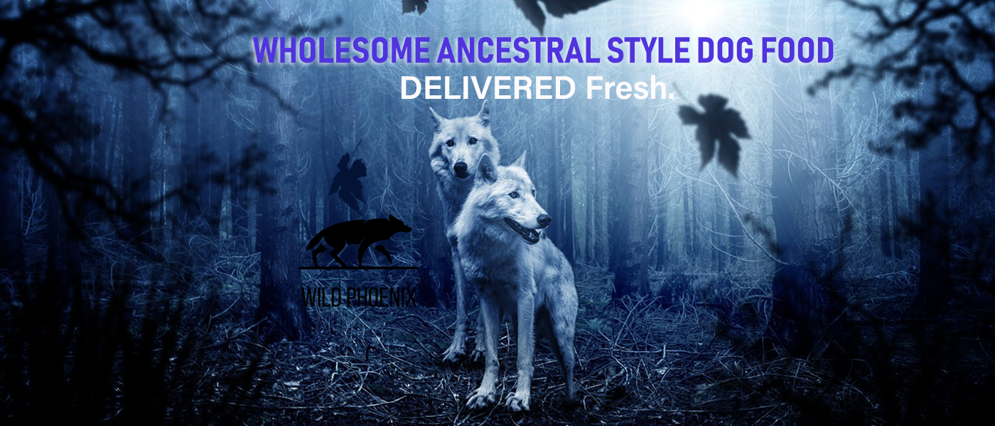 Wholesome ancestral-style dog food. Delivered Fresh.