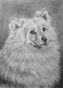 """Cheeky Smirk"" - 21x30cm, graphite on Strathmore bristol vellum. Art by Wild Portrait artist. SOLD."